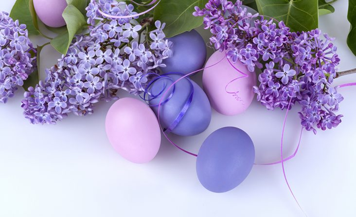 easter-lilac